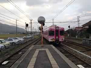 IMG_8184